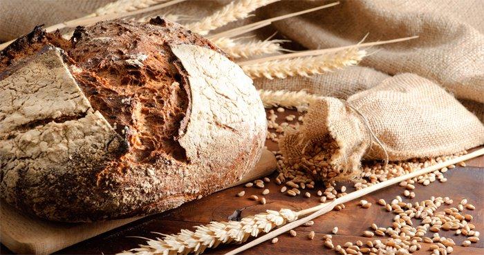 Gesù, cibo di Vita – XVIII Domenica del tempo ordinario